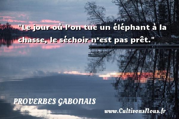 Le jour où l'on tue un éléphant à la chasse, le séchoir n'est pas prêt. Un Proverbe gabonais PROVERBES GABONAIS
