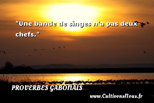 Une bande de singes n a pas deux chefs. Un Proverbe gabonais PROVERBES GABONAIS