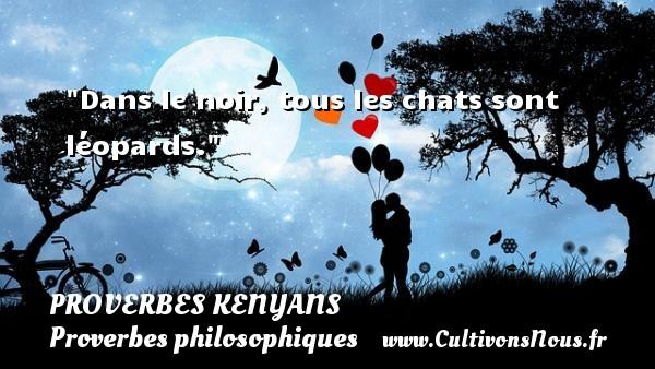 Dans le noir, tous les chats sont léopards. Un Proverbe kenyan PROVERBES KENYANS - Proverbes philosophiques
