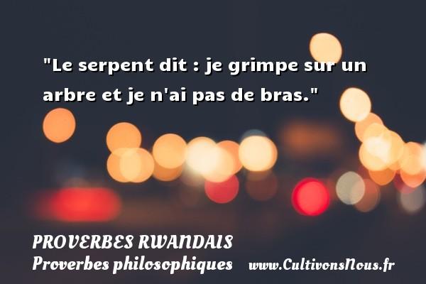 Proverbes rwandais - Proverbes philosophiques - Le serpent dit : je grimpe sur un arbre et je n ai pas de bras. Un Proverbe rwandais PROVERBES RWANDAIS