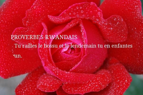 Tu railles le bossu et le lendemain tu en enfantes un. Un Proverbe rwandais PROVERBES RWANDAIS - Proverbes philosophiques
