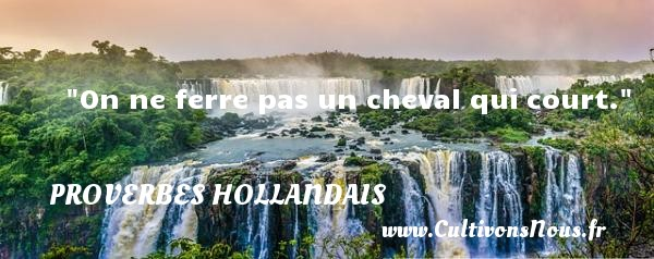 Proverbes hollandais - On ne ferre pas un cheval qui court. Un Proverbe hollandais PROVERBES HOLLANDAIS
