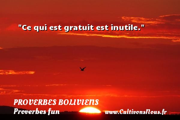 Proverbes boliviens - Proverbes fun - Proverbes philosophiques - Ce qui est gratuit est inutile. Un Proverbe bolivien PROVERBES BOLIVIENS