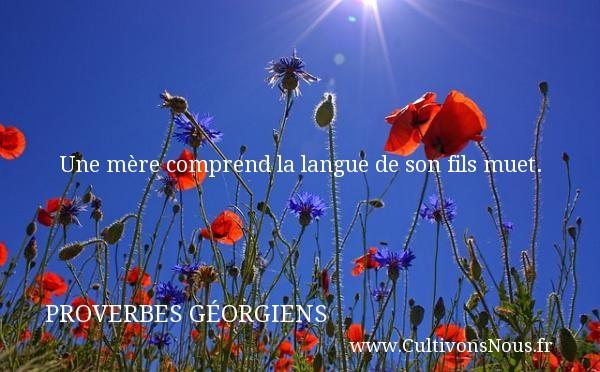 Une mère comprend la langue de son fils muet. Un Proverbe géorgien PROVERBES GÉORGIENS - Proverbes géorgiens - Proverbes fun