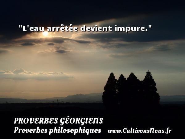 Proverbes géorgiens - Proverbes philosophiques - L eau arrêtée devient impure. Un Proverbe géorgien PROVERBES GÉORGIENS