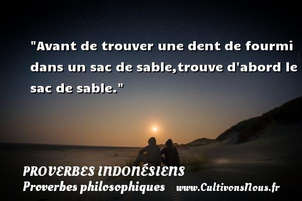 Proverbes indonésiens - Proverbes philosophiques - Avant de trouver une dent de fourmi dans un sac de sable,trouve d abord le sac de sable.  Un Proverbe indonésien PROVERBES INDONÉSIENS