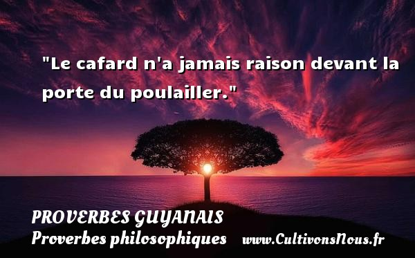 Le cafard n a jamais raison devant la porte du poulailler. Un Proverbe guyanais PROVERBES GUYANAIS - Proverbes philosophiques