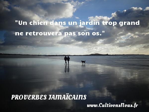 Proverbes jamaïcains - Proverbe jardin - Un chien dans un jardin trop grand ne retrouvera pas son os. Un Proverbe jamaïcain PROVERBES JAMAÏCAINS