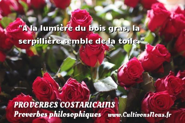 Proverbes Costaricains - Proverbes philosophiques - A la lumière du bois gras, la serpillière semble de la toile. Un Proverbe Costaricain PROVERBES COSTARICAINS