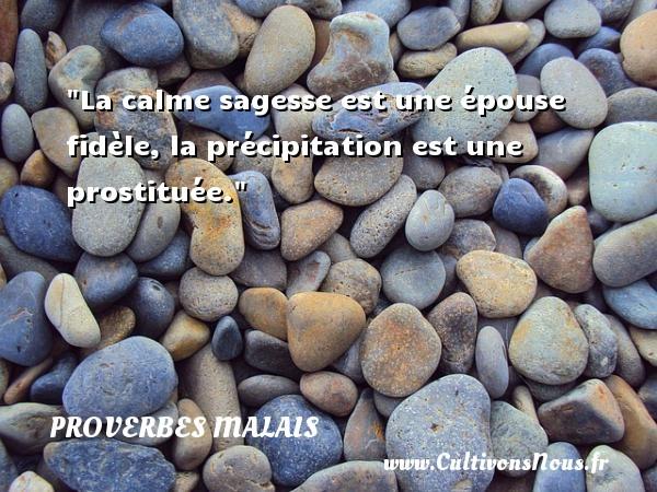 La calme sagesse est une épouse fidèle, la précipitation est une prostituée.  Un Proverbe malais PROVERBES MALAIS - Proverbes sagesse