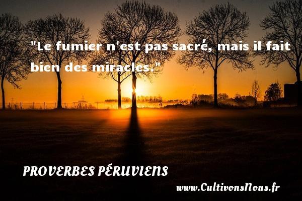 Proverbes péruviens - Proverbes philosophiques - Le fumier n est pas sacré, mais il fait bien des miracles. Un Proverbe péruvien PROVERBES PÉRUVIENS
