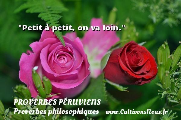 Proverbes péruviens - Proverbes philosophiques - Petit à petit, on va loin. Un Proverbe péruvien PROVERBES PÉRUVIENS