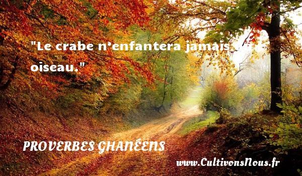Le crabe n'enfantera jamais un oiseau. Un Proverbe ghanéen PROVERBES GHANÉENS - Proverbes ghanéens - Proverbes philosophiques