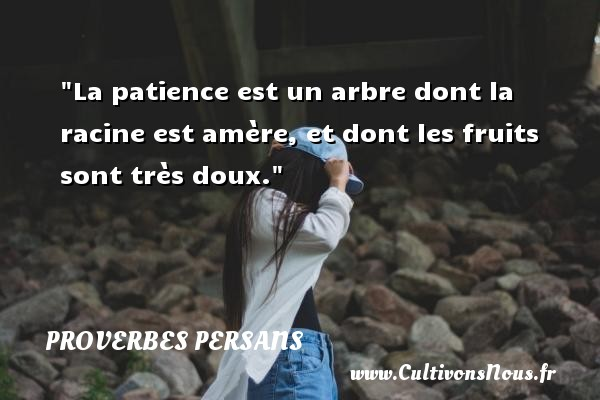 Proverbes persans - La patience est un arbre dont la racine est amère, et dont les fruits sont très doux. Un Proverbe persan PROVERBES PERSANS