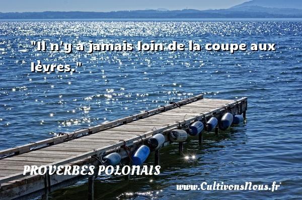 Il n y a jamais loin de la coupe aux lèvres. Un Proverbe polonais PROVERBES POLONAIS - Proverbes philosophiques