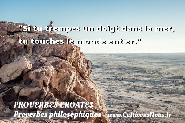 Proverbes croates - Proverbes philosophiques - Si tu trempes un doigt dans la mer, tu touches le monde entier. Un Proverbe croate PROVERBES CROATES