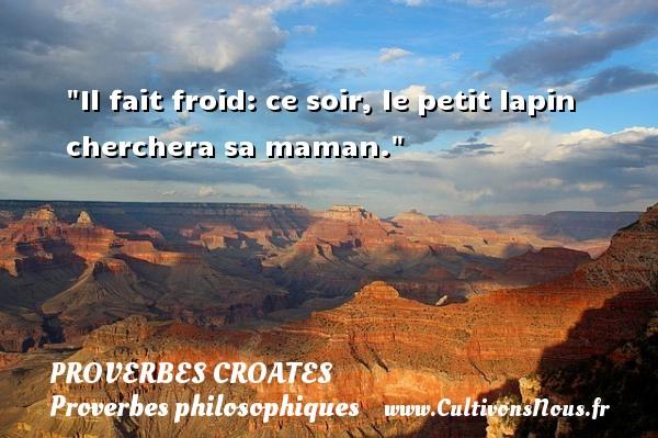 Proverbes croates - Proverbes philosophiques - Il fait froid: ce soir, le petit lapin cherchera sa maman. Un Proverbe croate PROVERBES CROATES