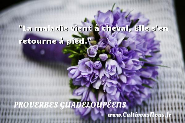 La maladie vient à cheval, Elle s en retourne à pied. Un Proverbe guadeloupéen PROVERBES GUADELOUPÉENS - Proverbes guadeloupéens