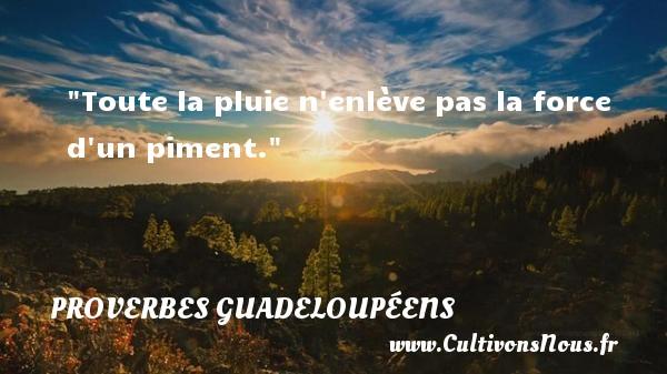 Proverbes guadeloupéens - Toute la pluie n enlève pas la force d un piment. Un Proverbe guadeloupéen PROVERBES GUADELOUPÉENS