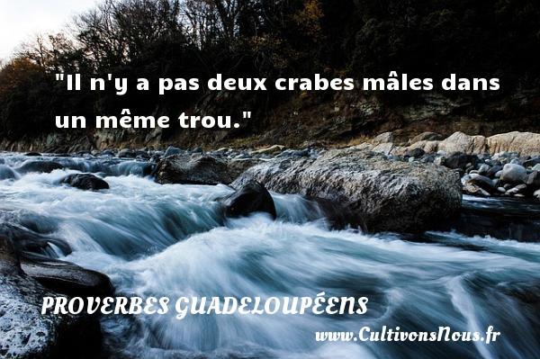 Proverbes guadeloupéens - Il n y a pas deux crabes mâles dans un même trou. Un Proverbe guadeloupéen PROVERBES GUADELOUPÉENS