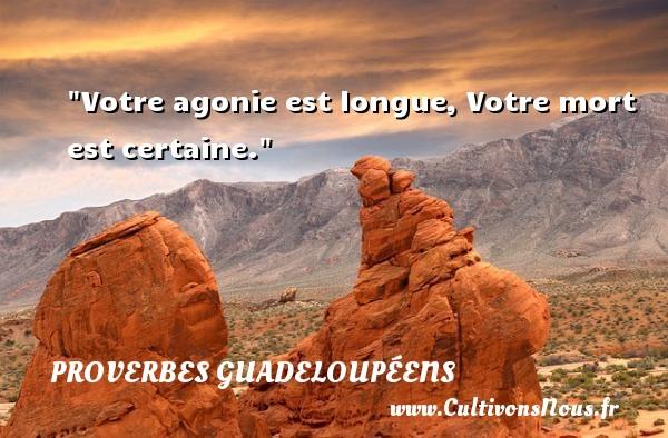 Votre agonie est longue, Votre mort est certaine. Un Proverbe guadeloupéen PROVERBES GUADELOUPÉENS - Proverbes guadeloupéens