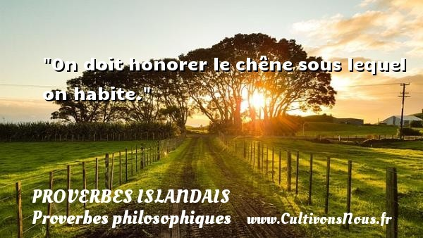 proverbe-philosophique