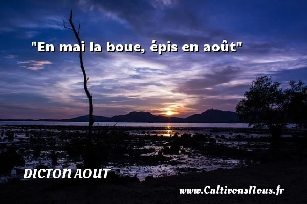 dicton aout