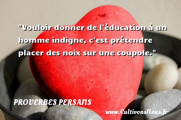 proverbes-education
