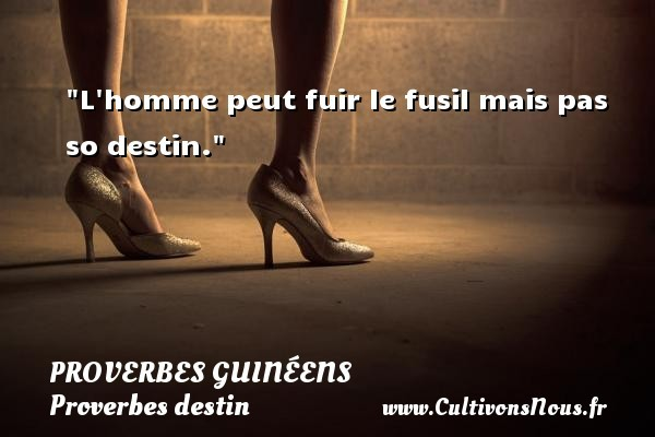 proverbes-destin