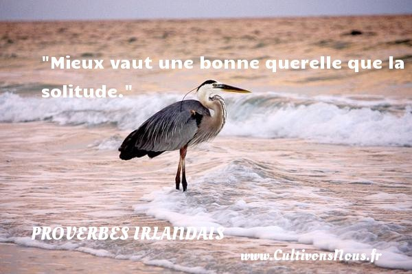 proverbe-solitude