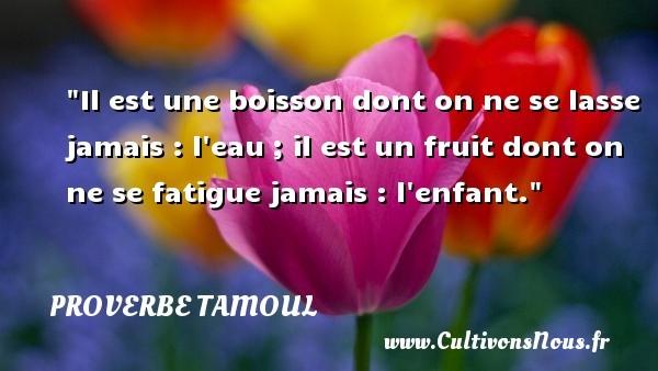 proverbe-bois