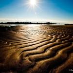 Des Faux-Semblants De Dune