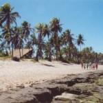 Poésie et joie de vivre brésilienne