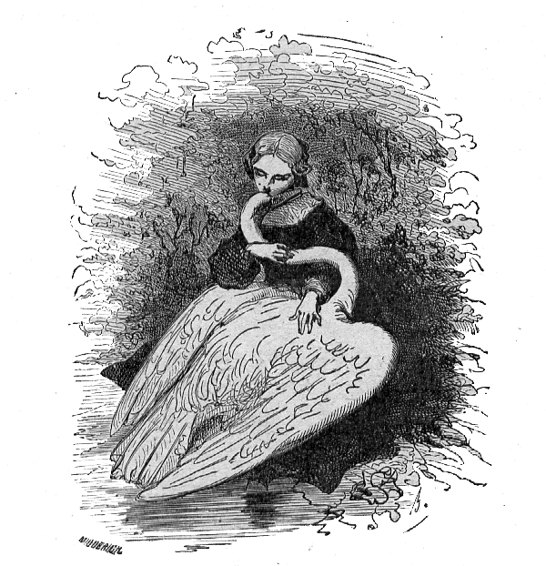 Les cygnes sauvages, un conte de Hans Christian Andersen