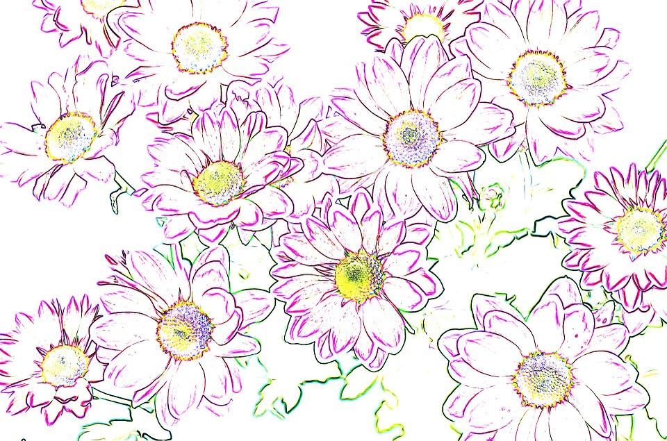Les fleurs de la petite Ida, un conte de Hans Christian Andersen