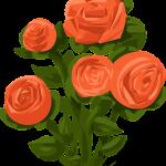 Une rose de la tombe d'Homère