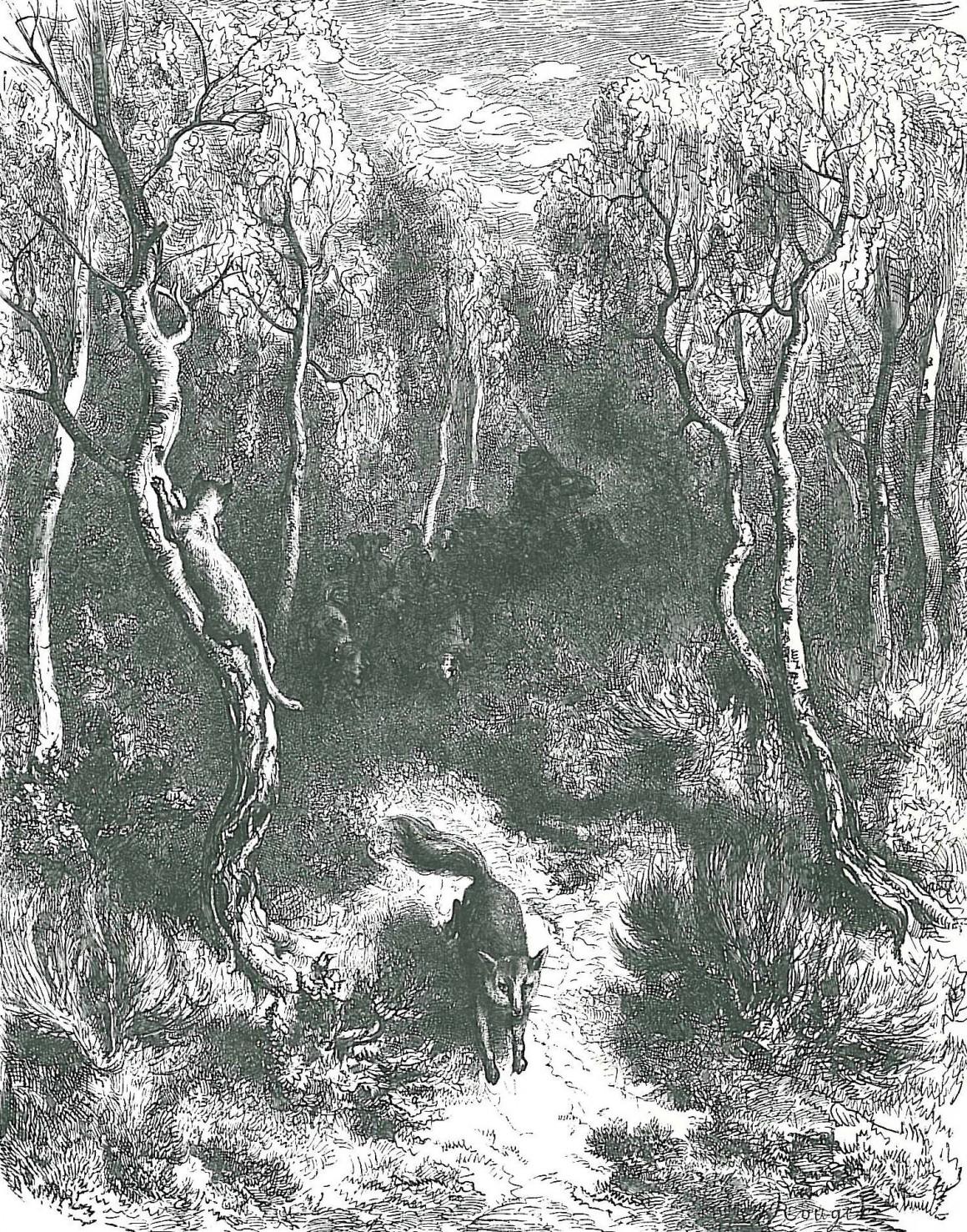 Le renard et le chat, un conte de Grimm