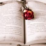 Poème de  CATHERINE DES ROCHES dédié à son amant espagnol