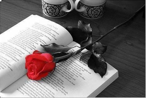 concours-poesie-citation