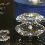 La perle et le coquillage