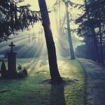 Vivante et morte séparée