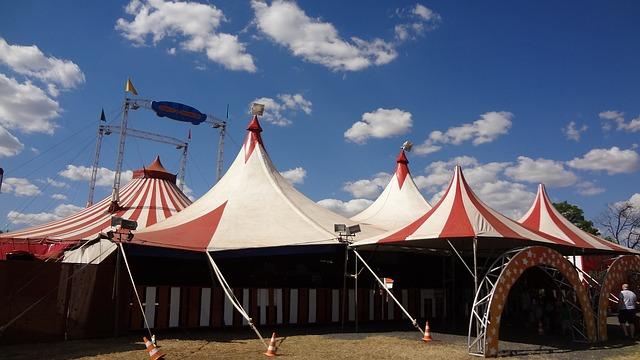 le monde du cirque a paris les spectacles a ne pas manquer en cette fin d'annee
