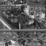 Colette, histoire et biographie de Colette