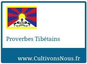 Proverbes Tibétains