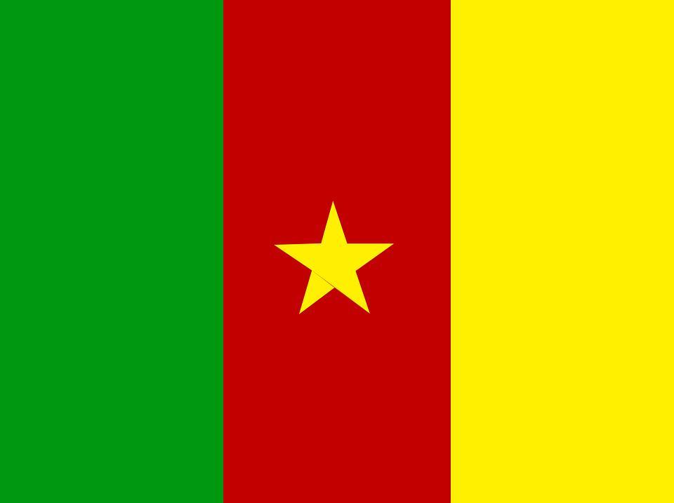 Drapeau Cameroun - Le drapeau camerounais