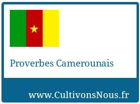 Proverbes Camerounais