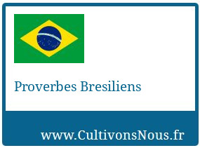 Proverbes Bresiliens