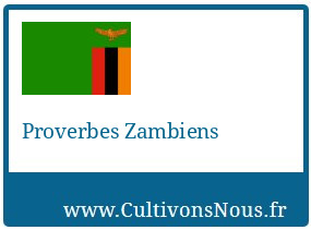 Proverbes Zambiens