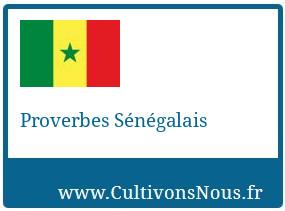 Proverbes Sénégalais