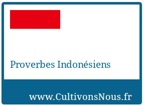Proverbes Indonésiens
